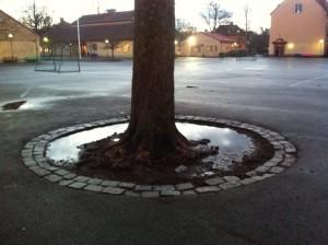Enskede skolas gård. Foto: AnnVixen