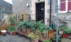 En av de hemliga trädgårdarna i Leith! Foto: AnnVixen