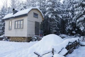 Hus på hjul, boyta 15 kvadrat plus loft, byggkostnad 60 000 kronor. Foto: Agata Mazgaj
