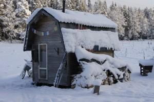 Hus på hjul, boyta 7 kvadrat, byggkostnad 4000 kronor. Foto: Agata Mazgaj