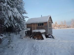 Hus på hjul, boyta 7 kvadrat, allt utom inre panel är byggt med återvunnet material, byggkostnad 10 000 kronor. Foto: AnnVixen