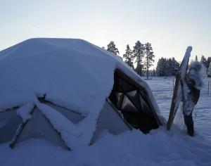 En snödusch från The Dome - växthuset på Flurlundar gård! Foto: Agata Mazgaj