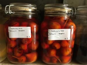 Fermenterade grönsaker Fäviken TellusThinkTank.se AnnVixen