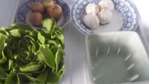 Grönsaker sköljs och läggs i glas, metal och porslin behållare. Foto: Madeleine Norman