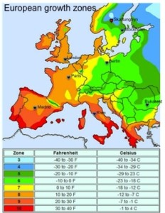 growth-zones-europe
