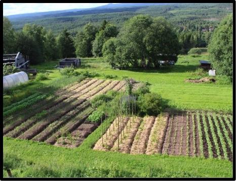 Självhushållande odling möjlig i nordlig växtzon Nr029
